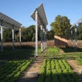 Présentation du solaire aux acteurs du monde Agricole